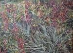 Blue Swirl Bear Grass